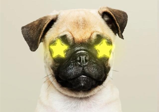 Laser eyes?