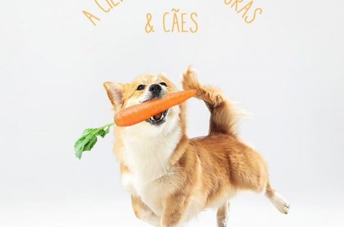 Cenouras e cães